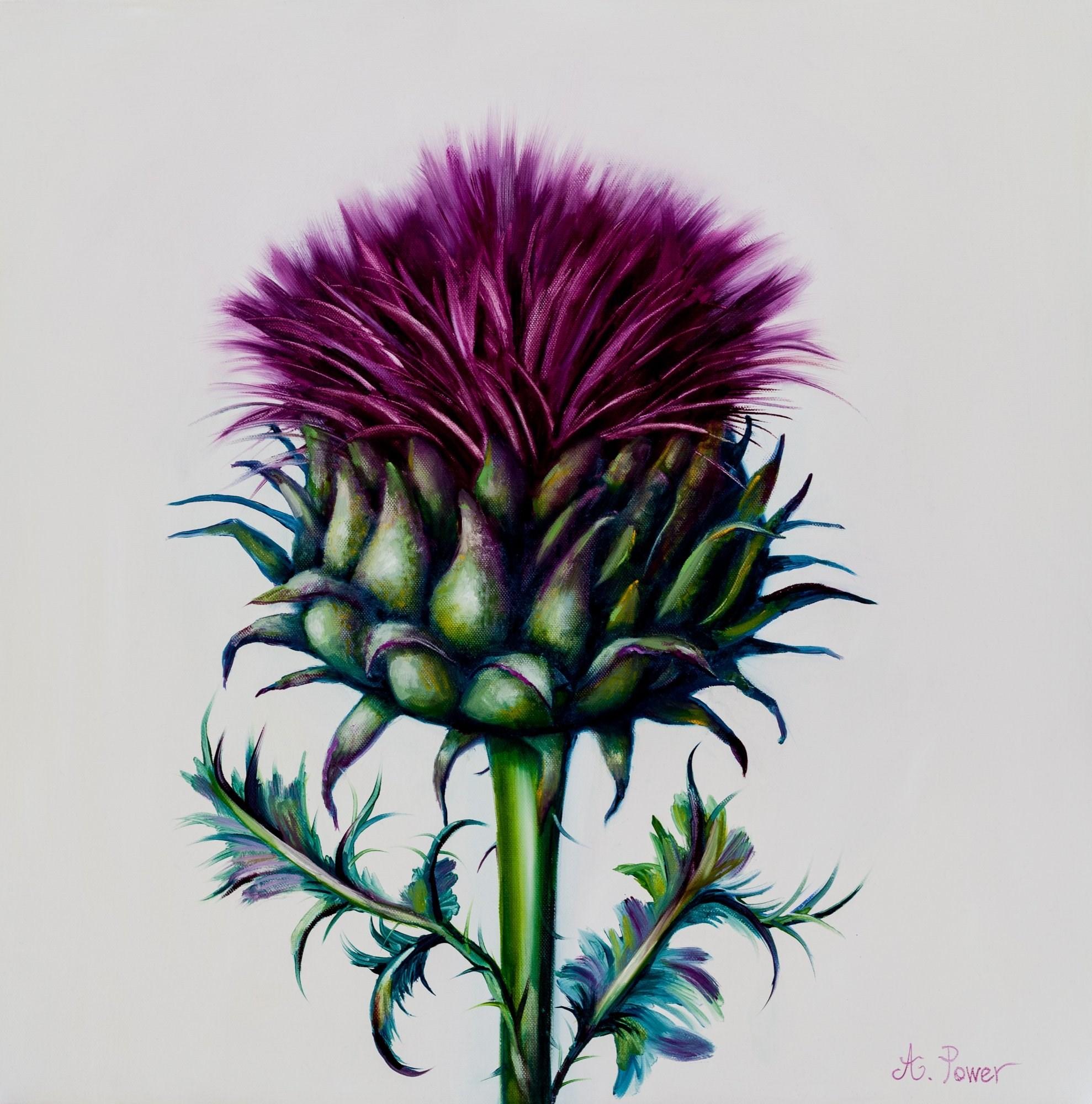 Gallery Flowers Anne Power Scottish Artist
